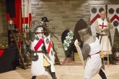 knightfest110